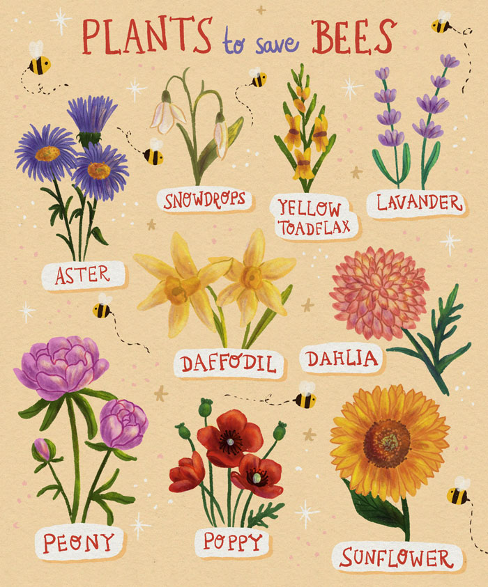 Plants-To-Save-Bees